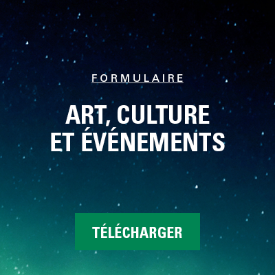formulaire_art culture evenement