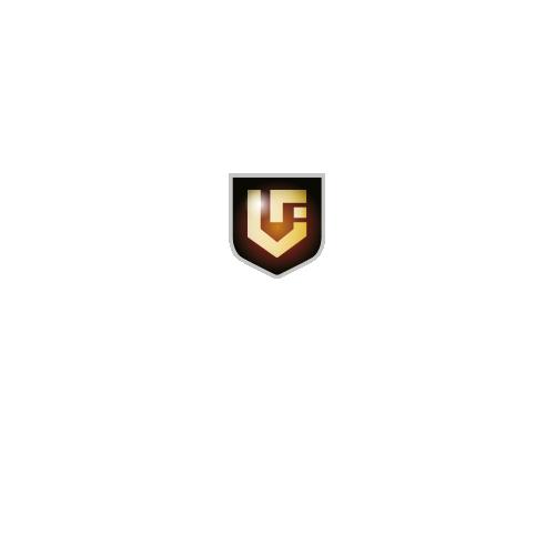 Villeneuve_logo2